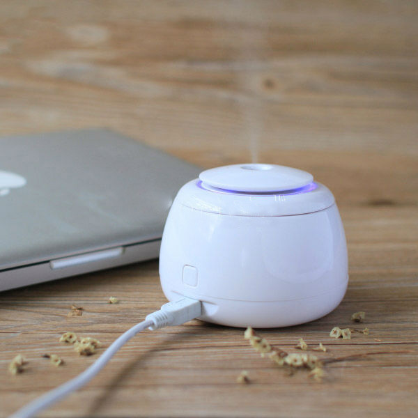 Mini Rice Cooker  USB Humidifier